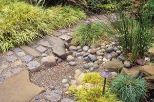 Rain garden Rock basin to collect rain water in garden