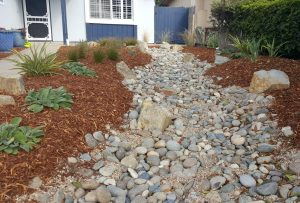 Rainwater hervesting and drought-tolerant landscaping in San Luis Obispo, CA