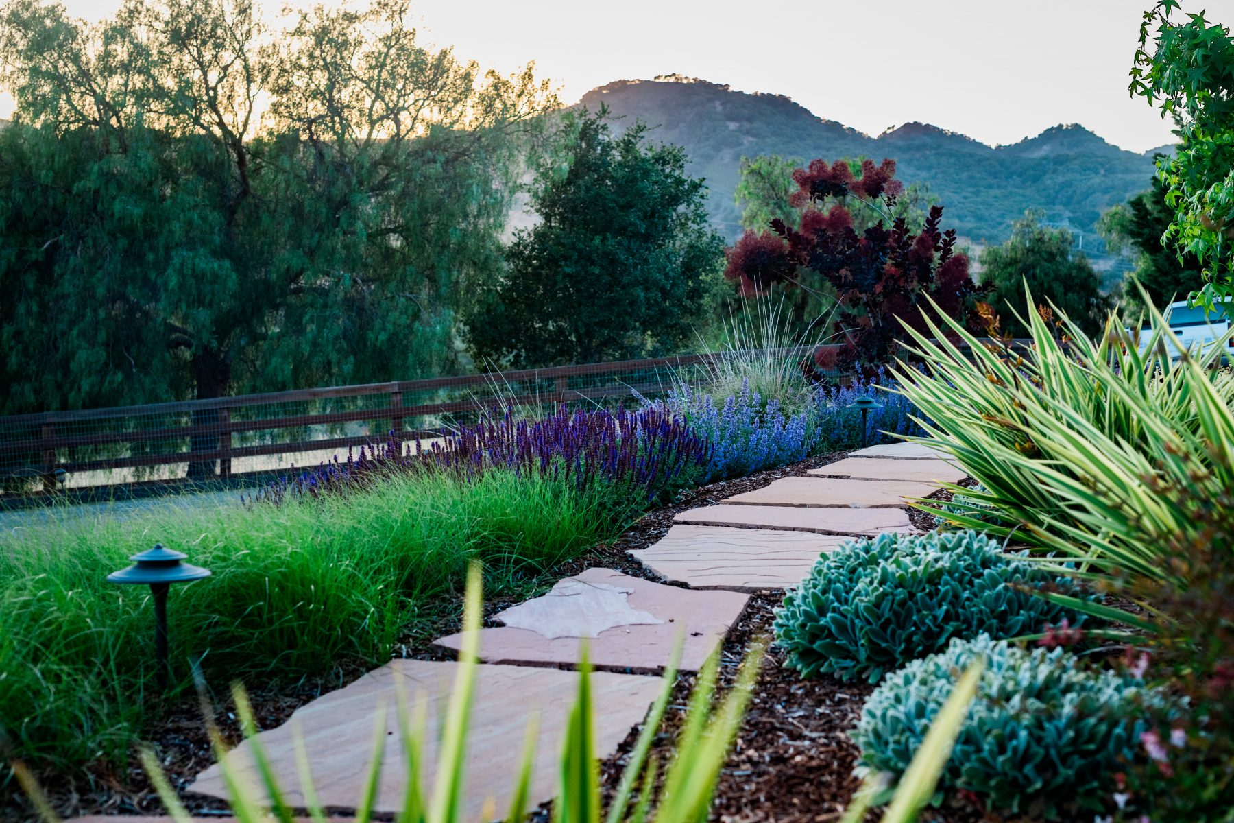 Ordinaire ... Tranquil Park Like Garden. We Included A Variety Of Colorful  Drought Tolerant Plants That Help Accent The House And Provide A  Comfortable Setting For ...