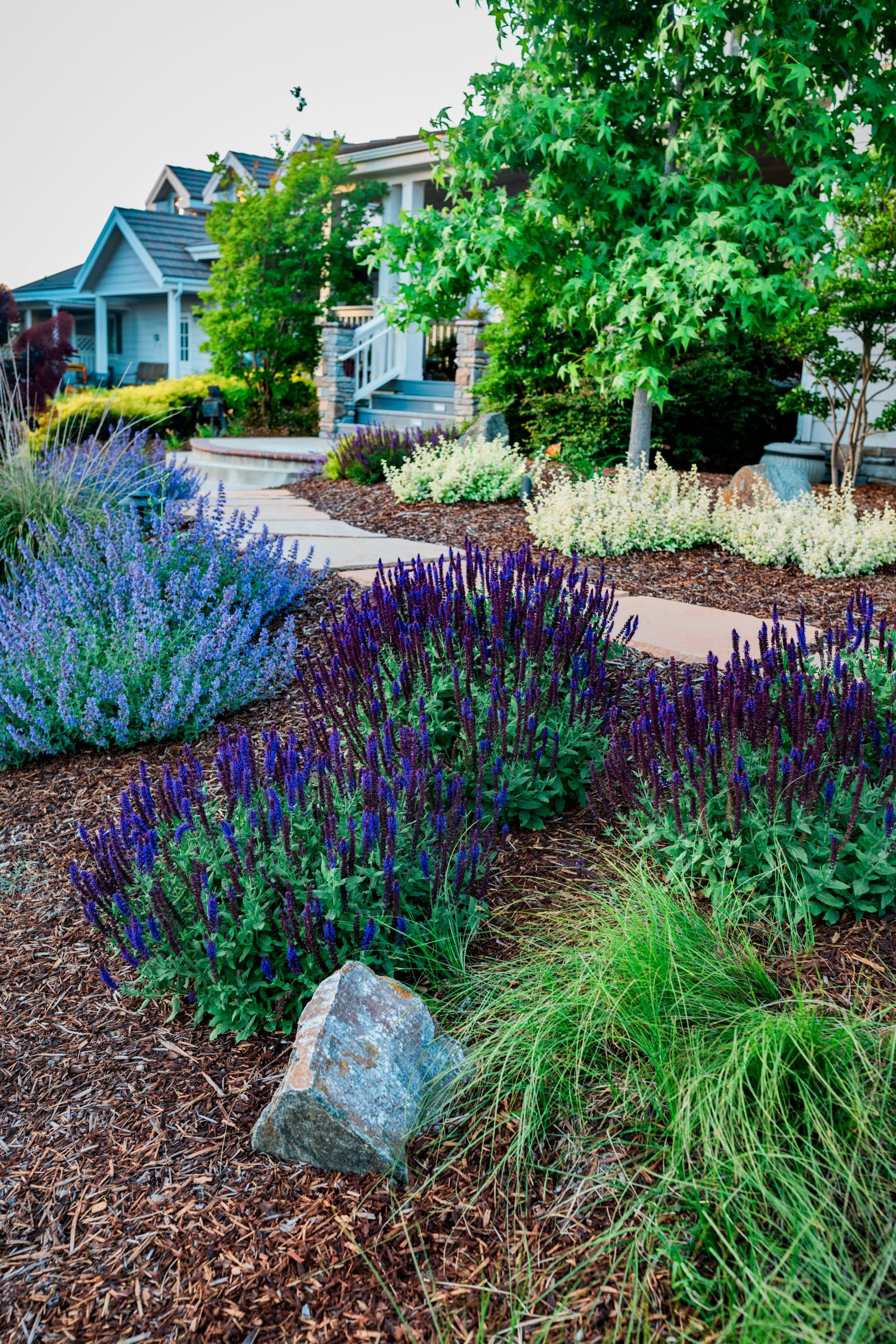 ... Tranquil Park Like Garden. We Included A Variety Of Colorful  Drought Tolerant Plants That Help Accent The House And Provide A  Comfortable Setting For ...