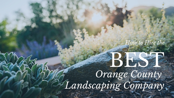 Best landscaping company in orange county